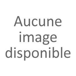 FONT DE TEINT GEMEY MAYBELLINE FIT AFFINITONE STICK MOKA COCONUT